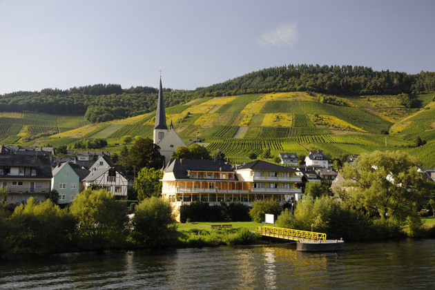 Magical Moselle River Cruise